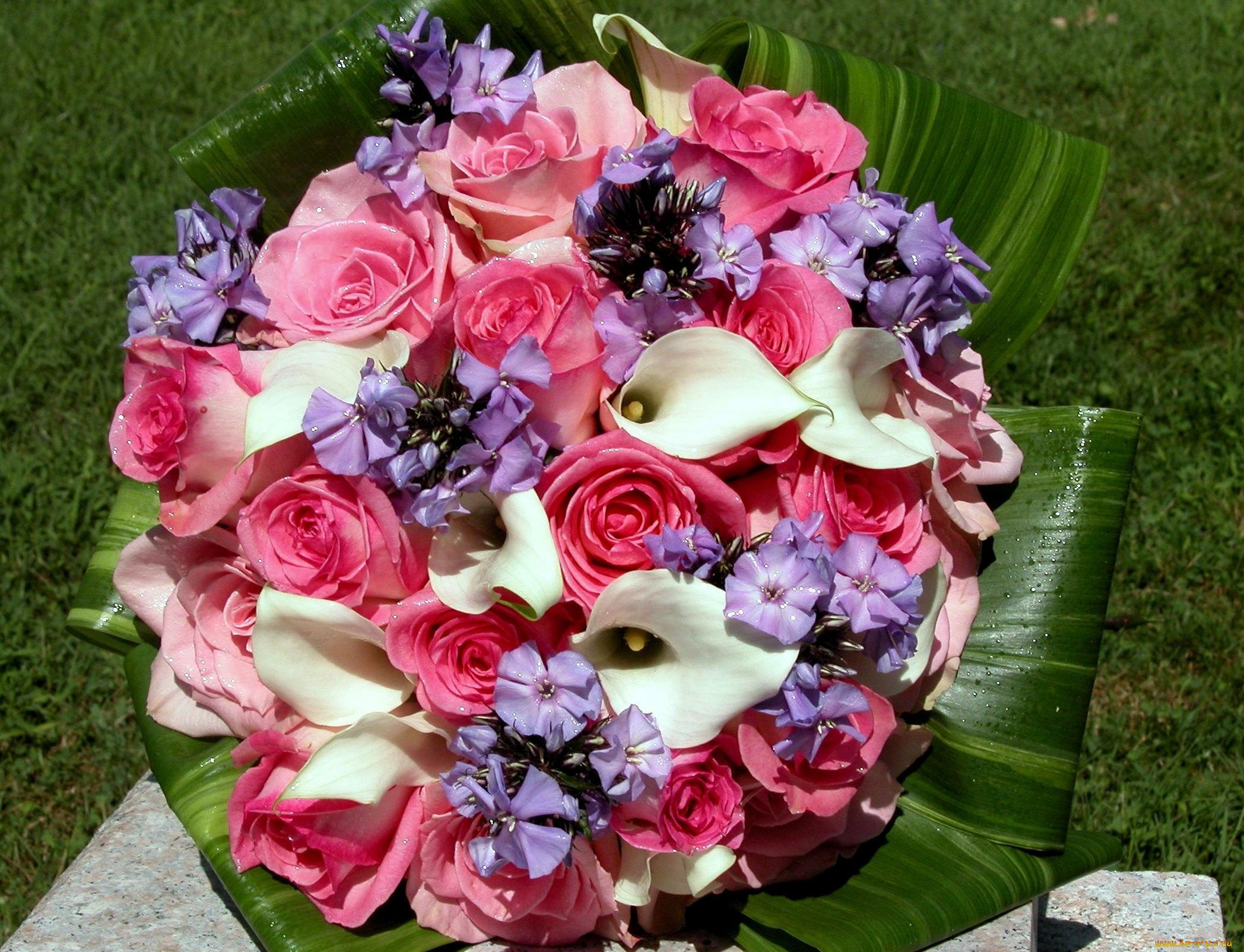 растения образуют великолепные фото букетов цветов буду верить